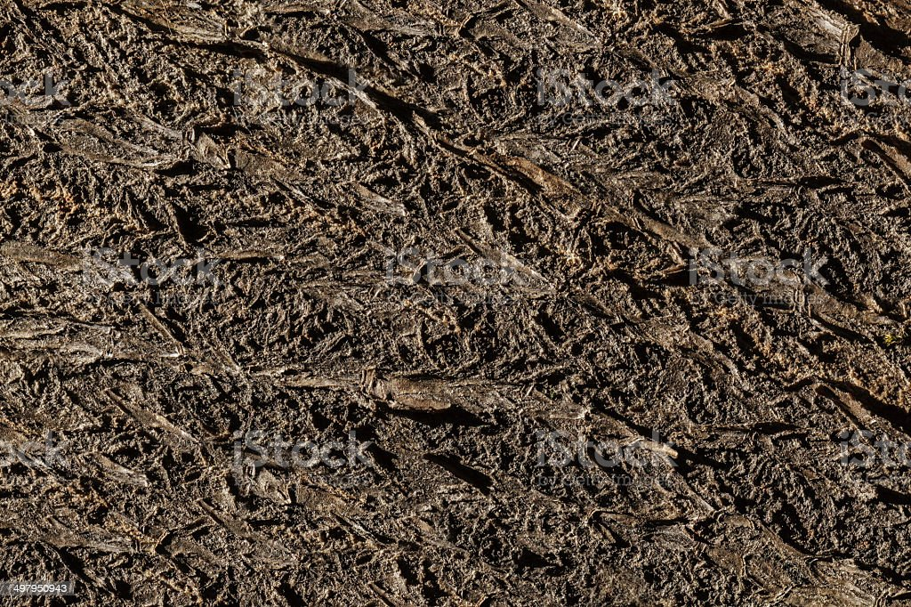 Low Key of textured background of wood log surface royalty-free stock photo