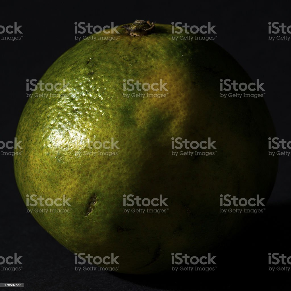 Low key real bio fruit: Tangelo Mapo royalty-free stock photo