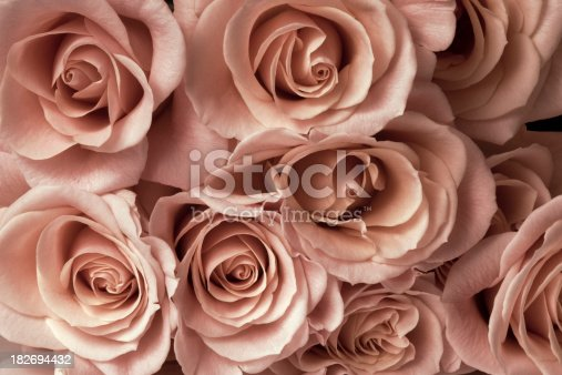 istock Low Light Bouquet 182694432