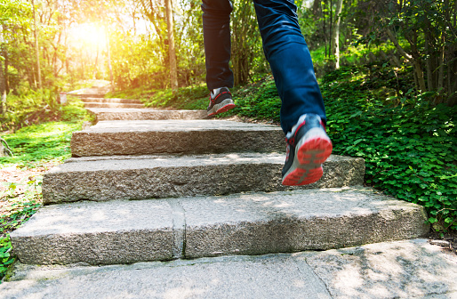 Low section of man running on forest stairs