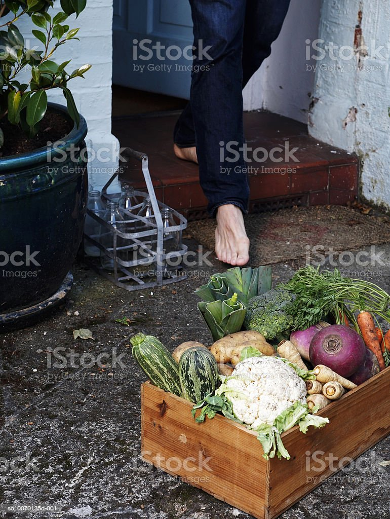 Low section of person walking towards crate of vegetables outside house royalty free stockfoto