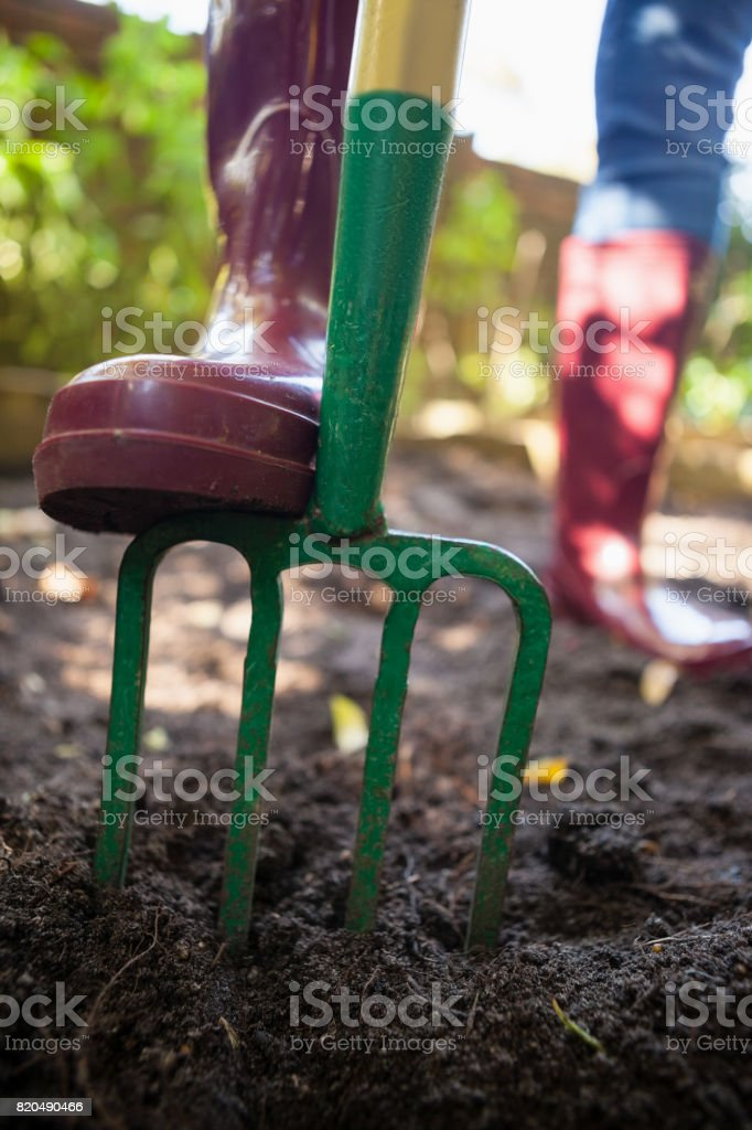 Low section of senior woman standing with garden fork on dirt stock photo