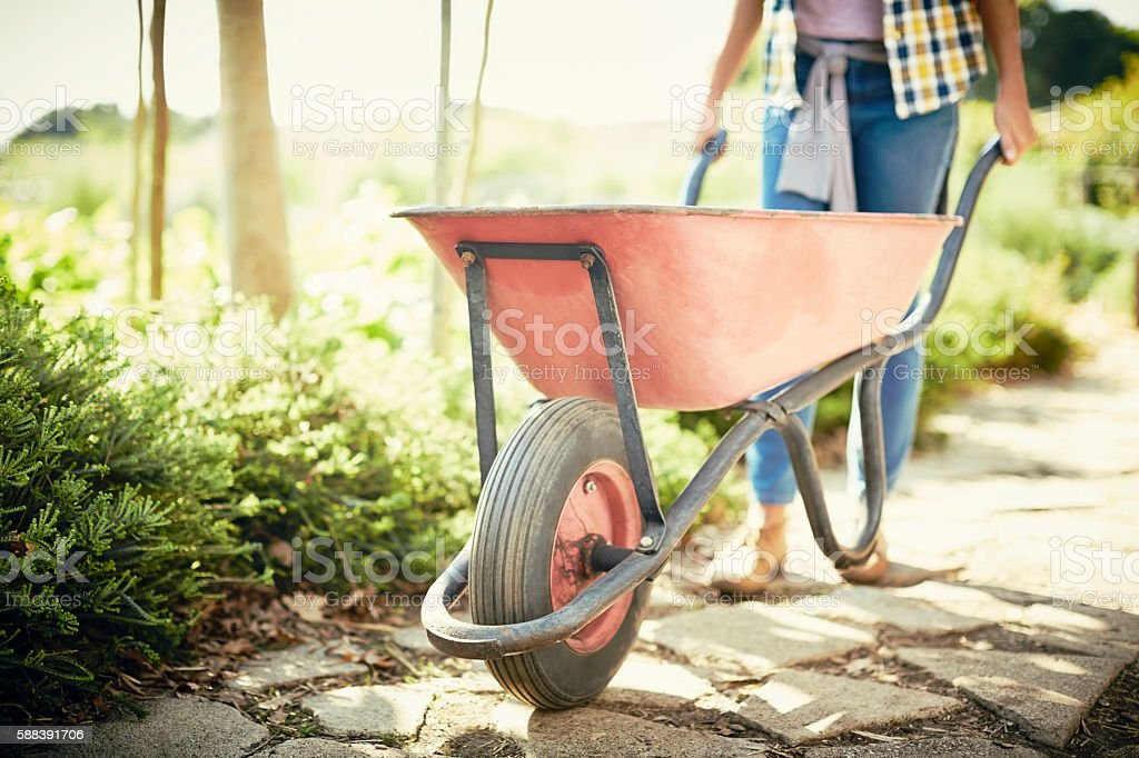 Low section of woman pushing wheelbarrow on footpath stock photo