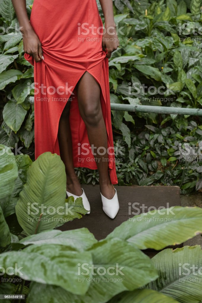 low section view of african american girl posing in red dress in tropical garden - Zbiór zdjęć royalty-free (Afro)