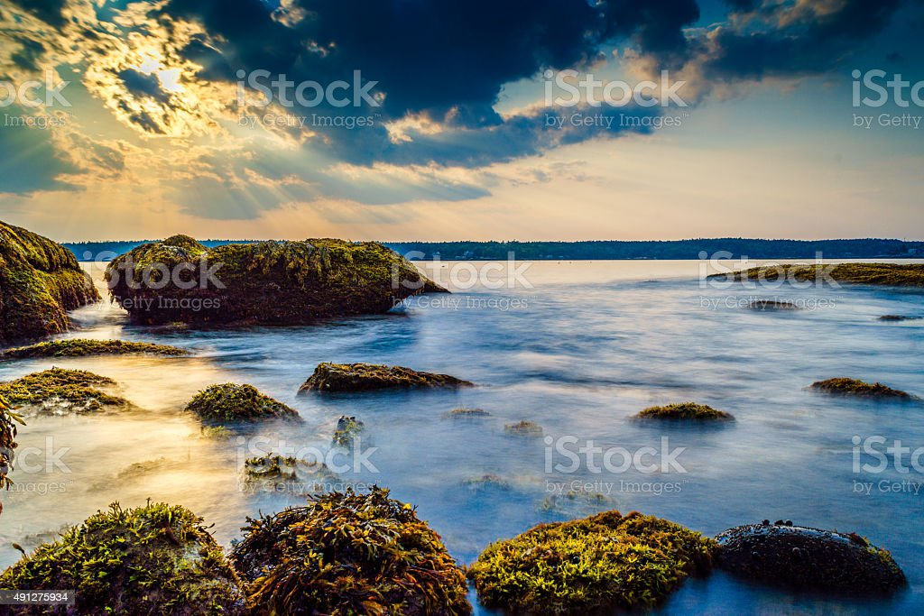 Low tidal mist on the rocky shores of Maine. stock photo