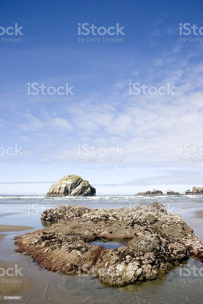 Low Tide and the Sea Stacks royalty-free stock photo