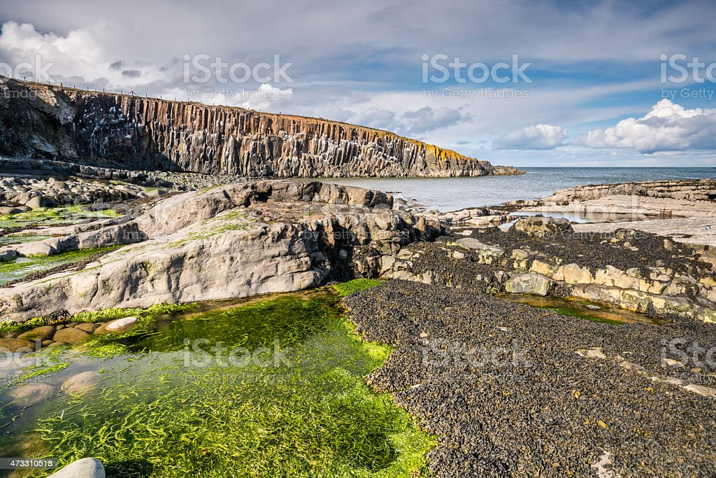 Low tide at Cullernose Point stock photo
