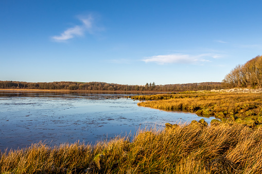 Low tide on a Scottish Coastal salt marsh at Kirkcudbright bay during the winter, Dumfries and Galloway, Scotland