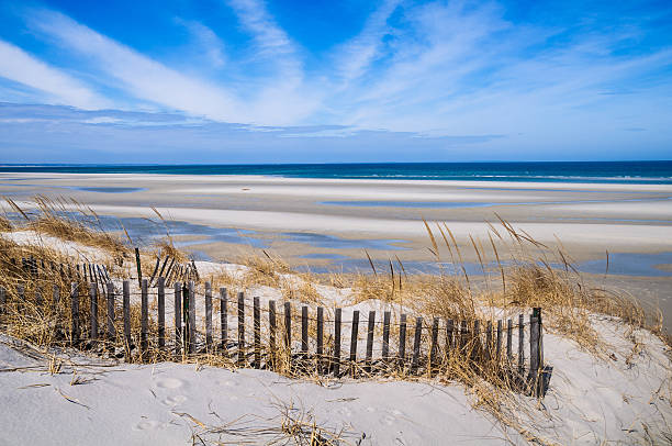 Low Tide on Mayflower Beach Wind blown beach grass and sand fences help maintain the fragile dunes along Mayflower Beach in Dennis, Massachusetts cape cod stock pictures, royalty-free photos & images