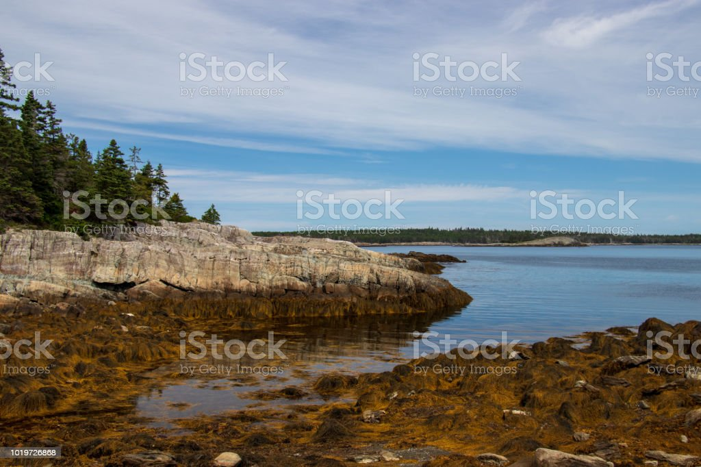 Low tide on Middle Island Lunenburg county, Nova Scotia. stock photo