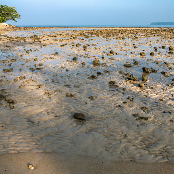 Cтоковое фото Low tide on the Andaman sea coast
