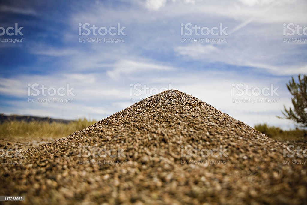 Low view of Ant Hill stock photo