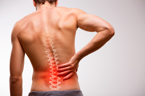 How the Skeletal Muscles cause Back Pain ?