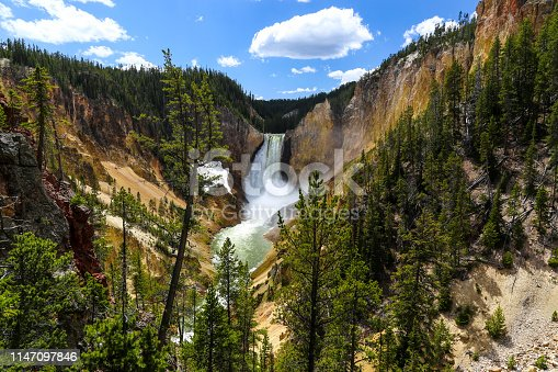 Lower Falls, the biggest waterfall in Yellowstone, is the most famous in the Park at 308 feet and lies in the Grand Canyon of the Yellowstone