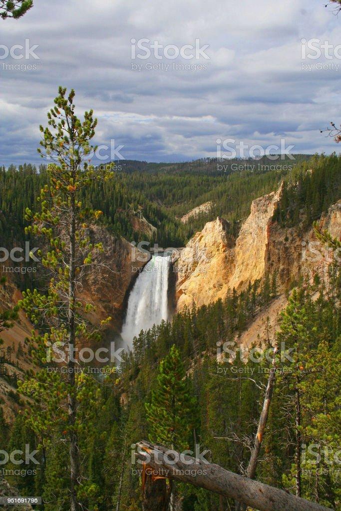 Lower Falls, Yellowstone National Park stock photo