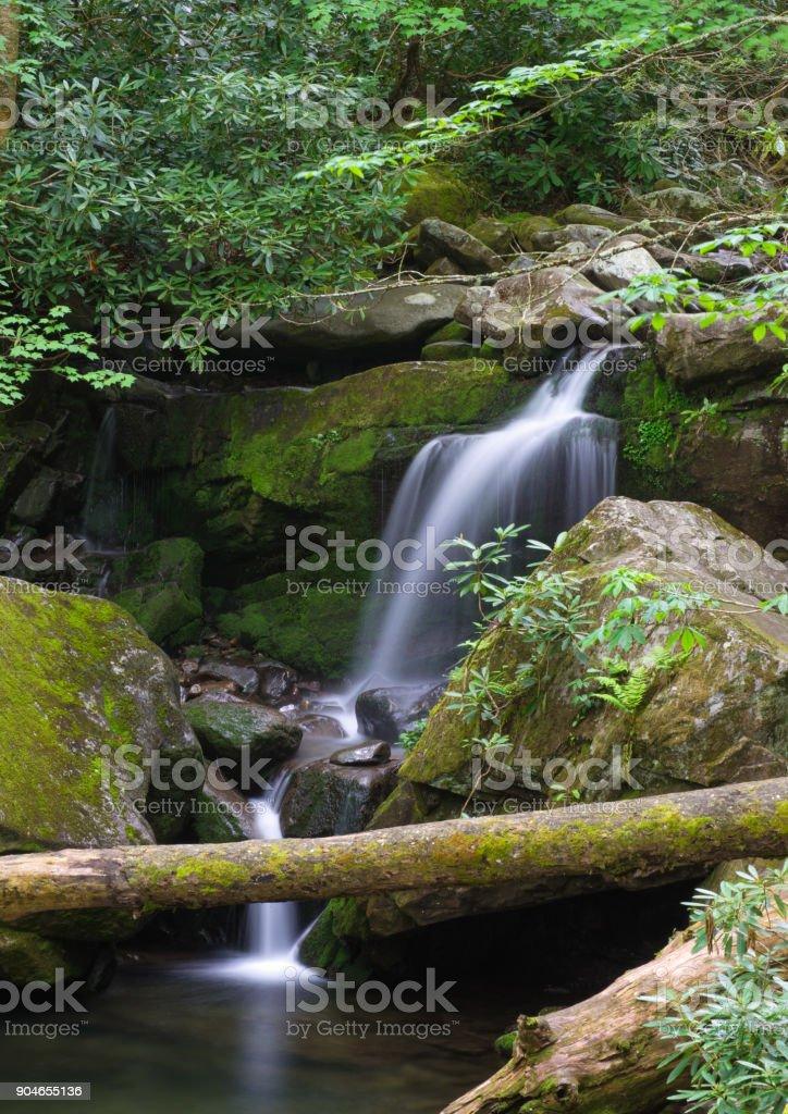 Lower Grotto Falls, GSMNP stock photo