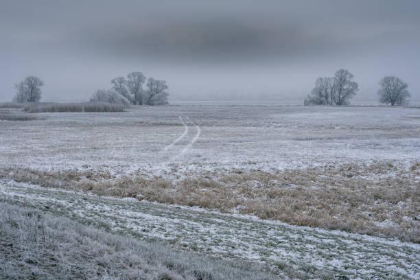 Nationalpark Unteres Odertal im Winter – Foto