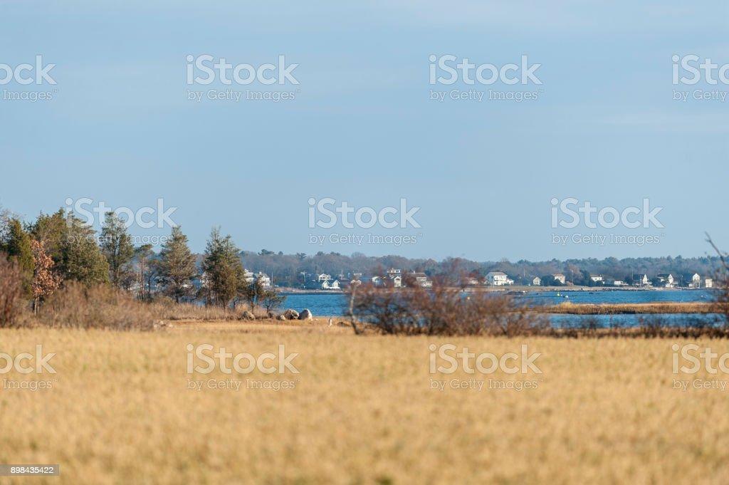 Low-lying coast stock photo