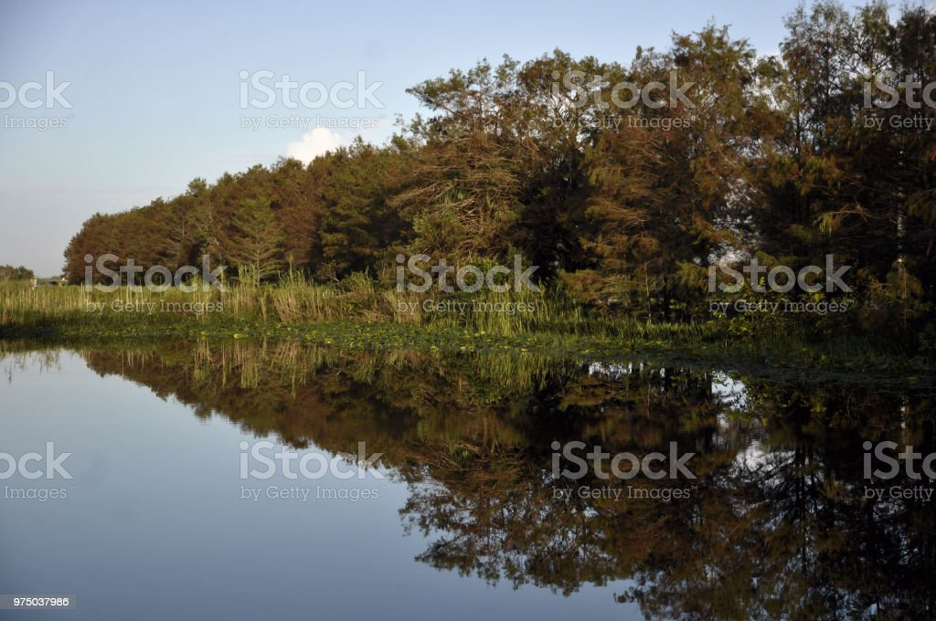 Loxahatchee National Wildlife Refuge stock photo