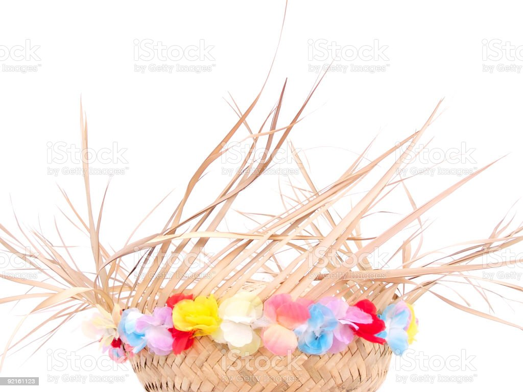 Luau Party Hat royalty-free stock photo