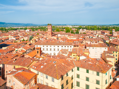istock Lucca cityscape lookout from Torre delle Ore. Red rooftops and Guinigi Tower, Lucca, Tuscany, Italy 993118526