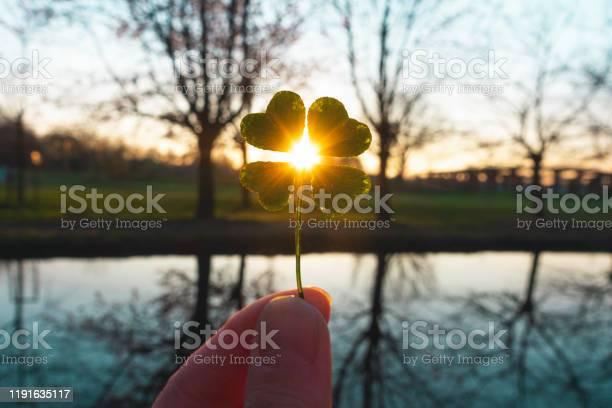 Lucky charm magic fourleaf clover picture id1191635117?b=1&k=6&m=1191635117&s=612x612&h=9taxtnan0lqvx6ozvgfbgh6elkygyk6dtsa 9t7bv5c=