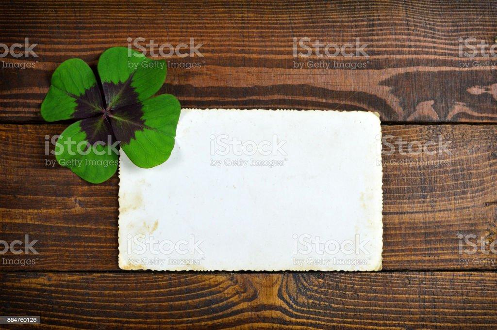 Sorte trevo e cartão em branco sobre fundo de madeira - foto de acervo