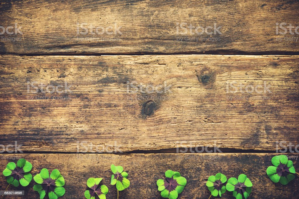 Lucky shamrock. St.Patrick's day background royalty-free stock photo