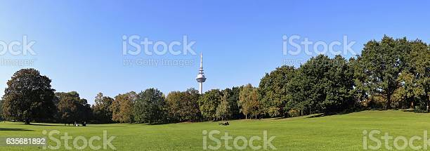 Luisenpark in Mannheim, in the background the communication tower