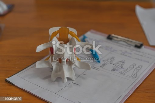 609830806 istock photo Lumbar spine model on table in Physiotherapy clinic11 1190643529