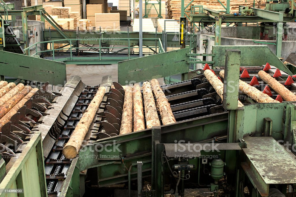 Lumber industry - cutting line in saw mill royalty-free stock photo