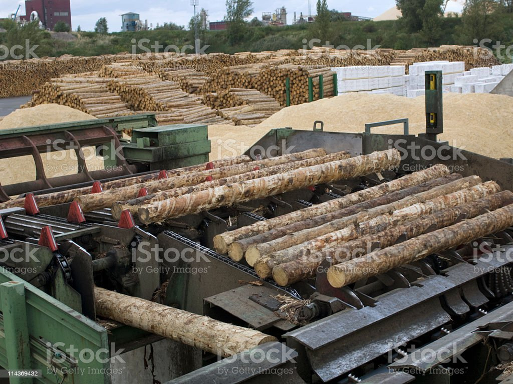 Lumber industry - cutting line in saw mill stock photo