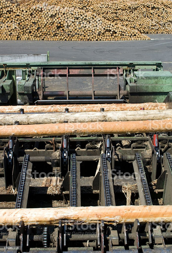 Lumber Industry - cutting line stock photo