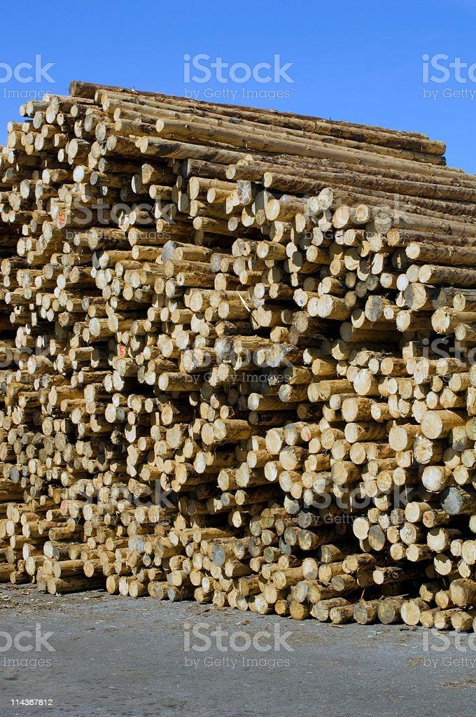 Lumber industry - Lumberyard stock photo