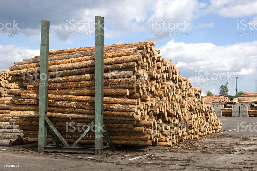Lumber industry - saw mill. stock photo