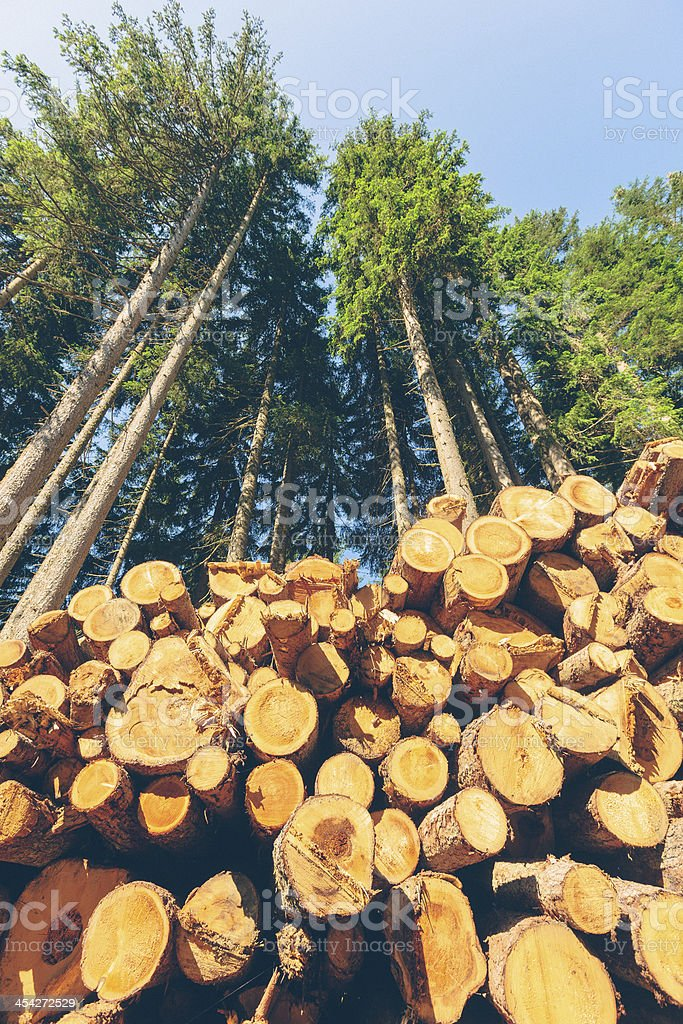 Lumber Mill royalty-free stock photo