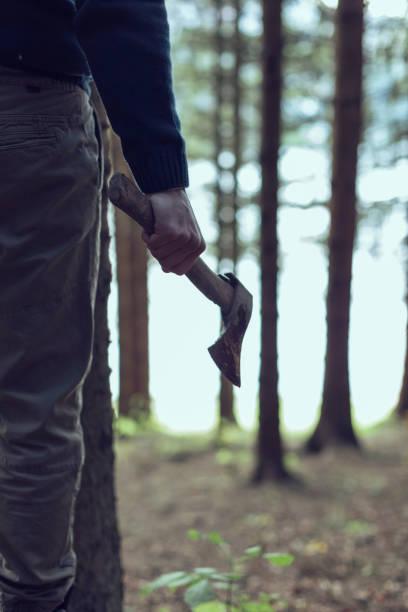 Holzfäller in den Wäldern – Foto