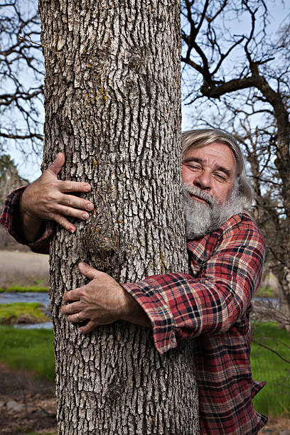 Lumberjack Tree Hugger A lumberjack turns into a tree hugger. tree hugging stock pictures, royalty-free photos & images