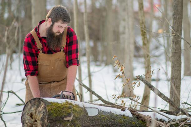 Lumberjack Using A Chainsaw stock photo