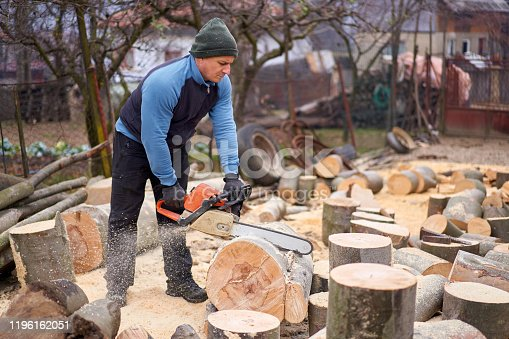 Lumberjack working on beech logs with chainsaw