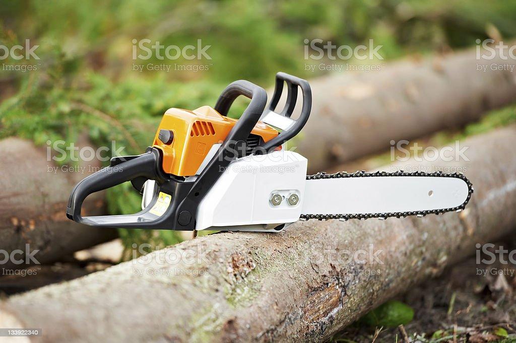 Lumberjack Work tool petrol Chainsaw stock photo