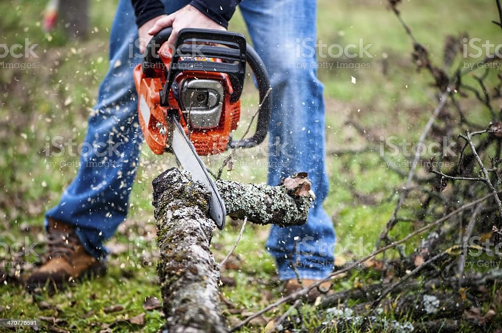 Lumberjack worker in full protective gear cutting firewood stock photo