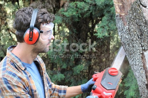 Lumberjack working with a chainsaw.