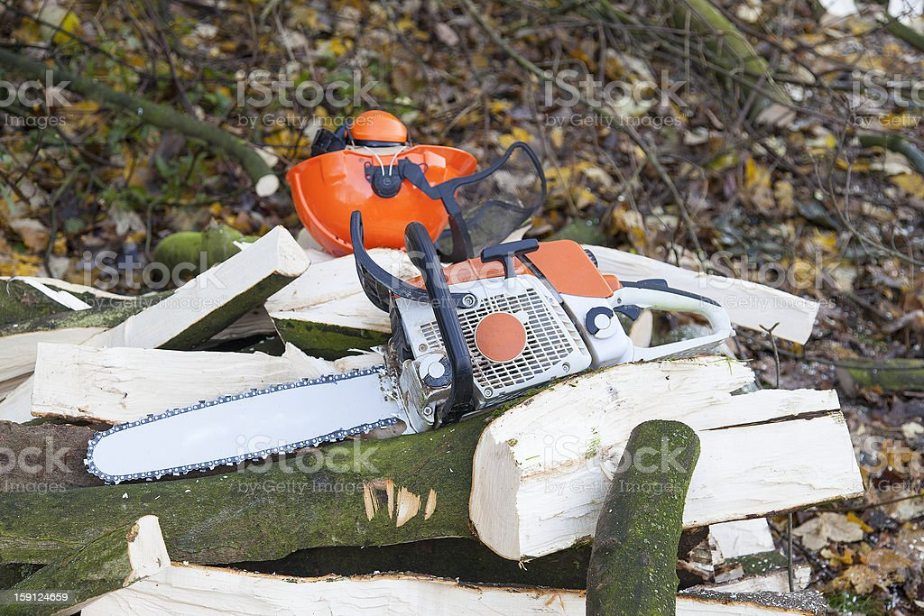 lumberjacks workplace royalty-free stock photo