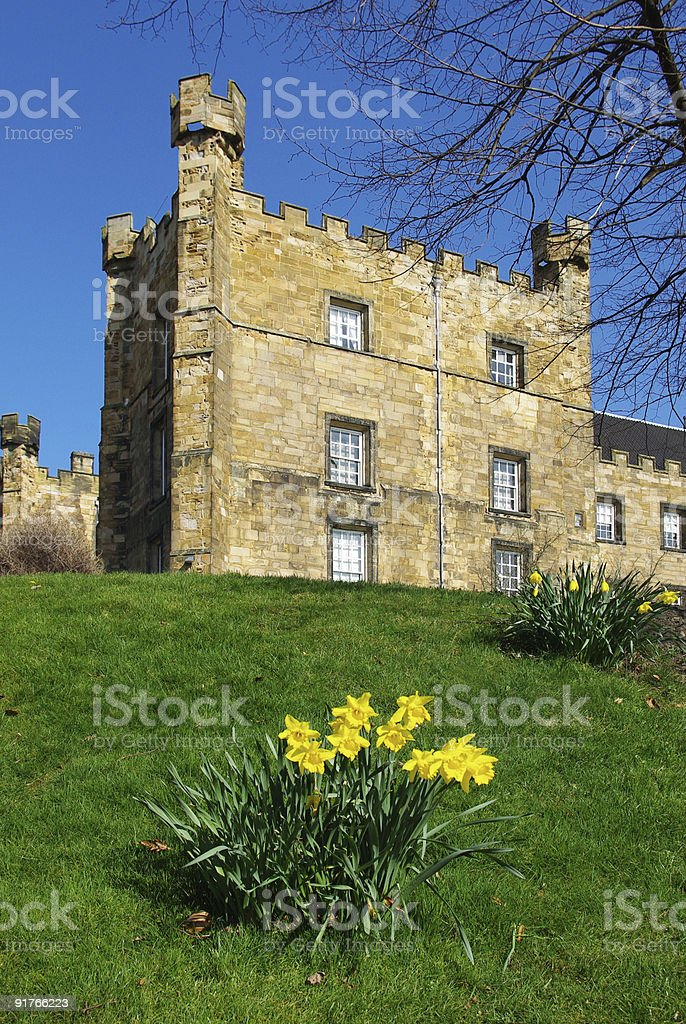 Lumley Castle with Daffodils. Stock photo stock photo