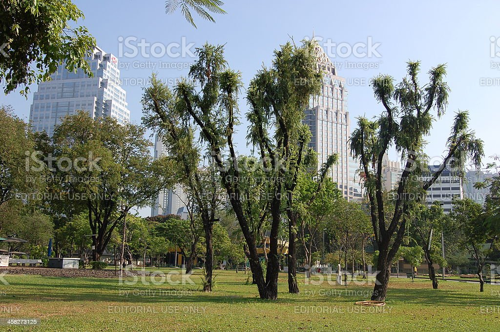 Lumpini park, Bangkok Thailand royalty-free stock photo