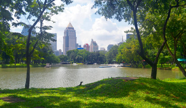 Lumpini Park in Bangkok stock photo