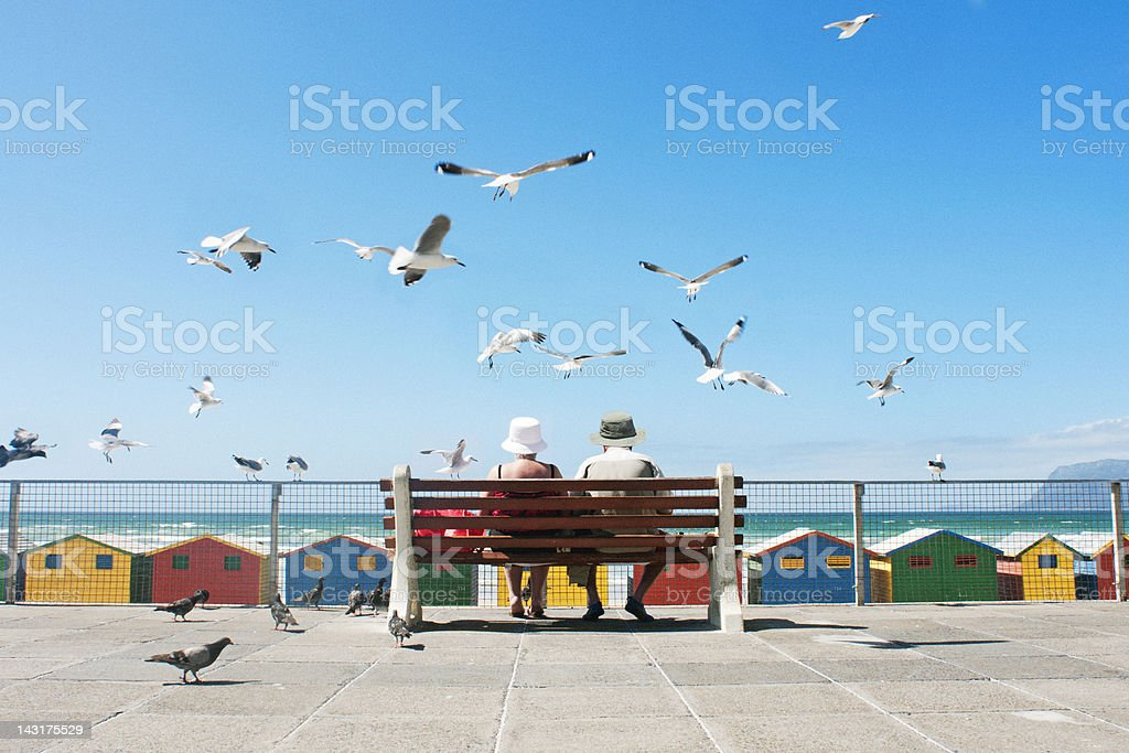 Lunch at the Beach royalty-free stock photo