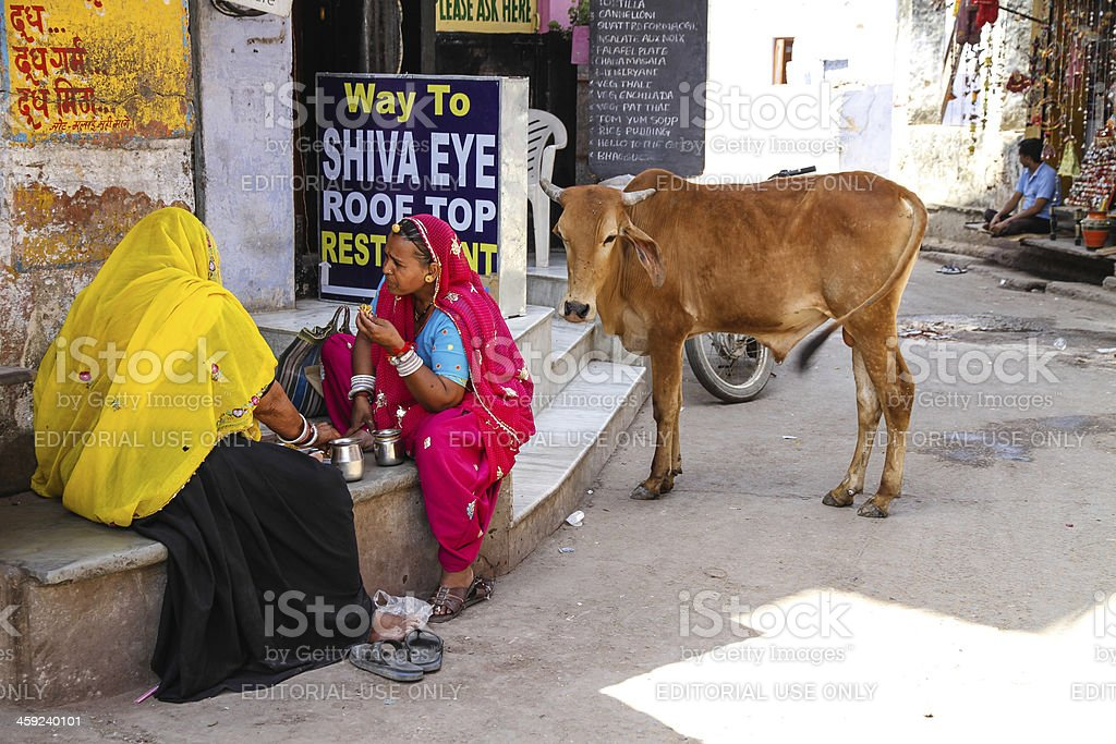Lunchtime in Pushkar royalty-free stock photo
