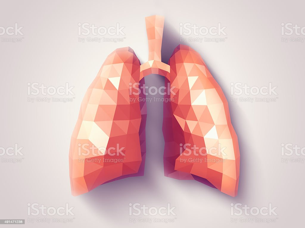 Lungs faceted stock photo